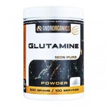 Androrganics Glutamin 500 g
